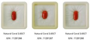 natural Coral stone